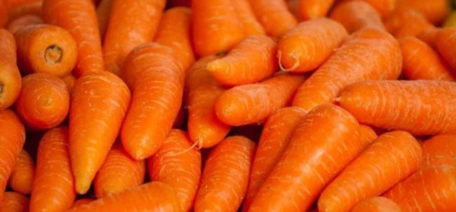 Чем полезна морковь и что вкусного из нее приготовить