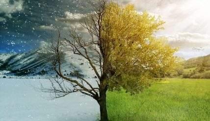 Что делать садоводу в весенний, летний, осенний и зимний периоды