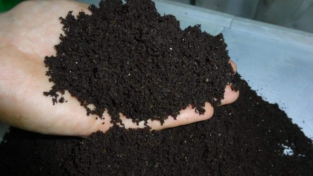 Биогумус для плодородия почвы
