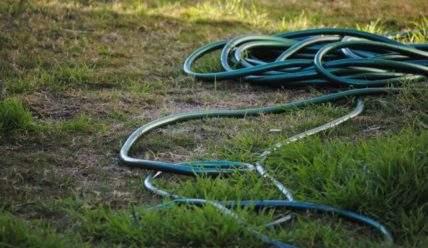 Проверьте все ли вы делаете в осеннюю и весенние уборки на огороде
