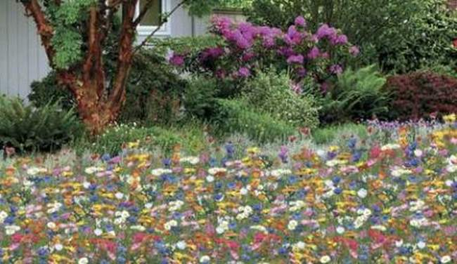 Декоративные элементы для сада. Часть 2
