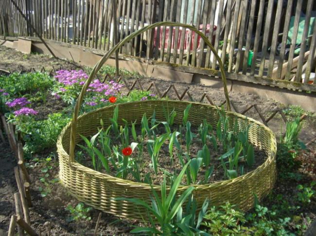 Цветник в плетеной корзине