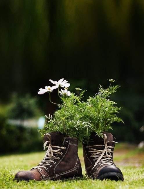 Цветы в ботинках