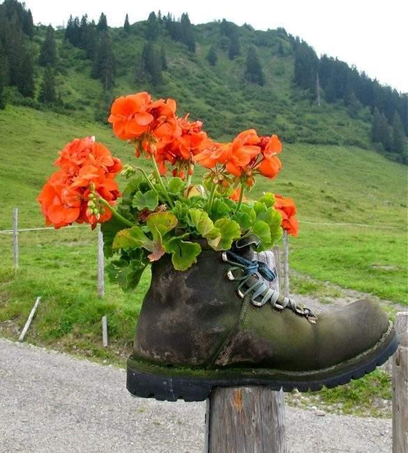 Ботинок-цветник