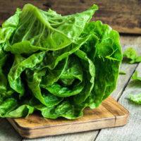 Как вырастить Кочанный салат в открытом грунте