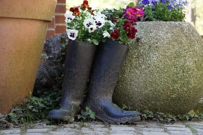 Интересные идеи для сада. Цветы в сапогах