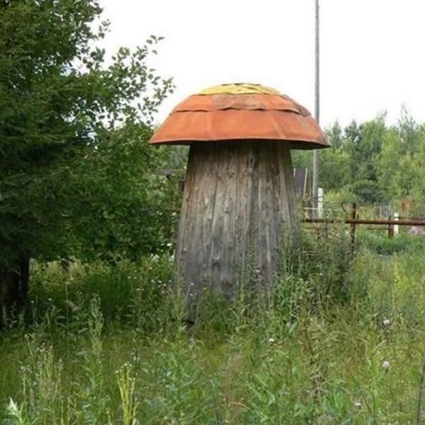 Фото оригинального дачного туалета