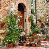 Оформляем сад вазами и контейнерами с цветами.