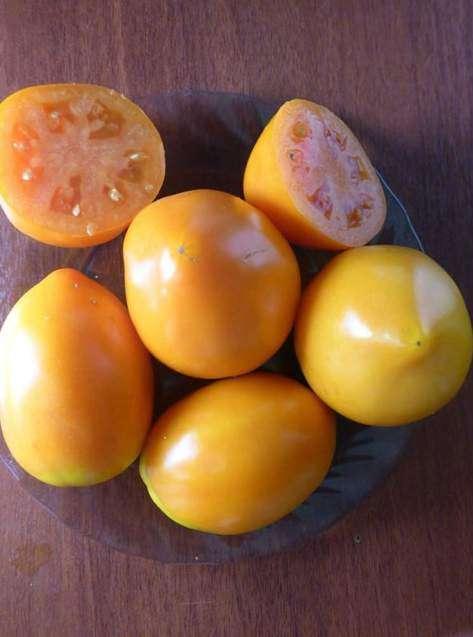 Плоды томата Хурма в разрезе