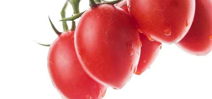 Какими сортами представлены помидоры Де Барао, какова урожайность и особенности выращивания