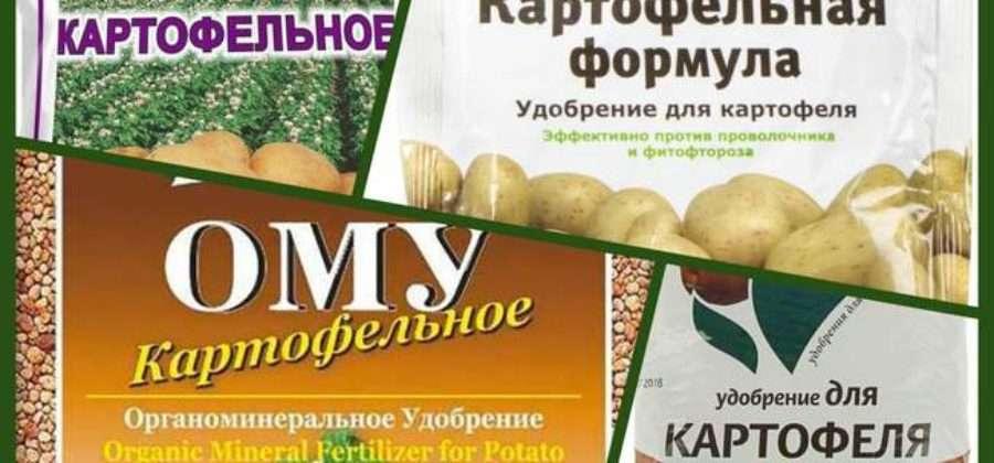 Выбираем удобрение для картофеля