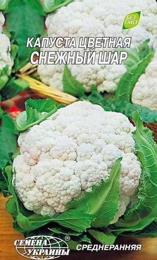 Цветная капуста Снежный шар