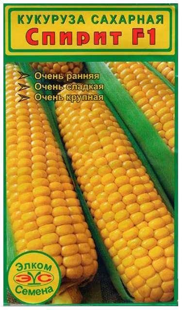 Кукуруза Спирит