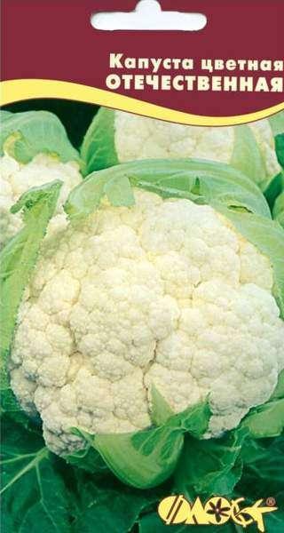 Сорт цветной капусты Отечественная