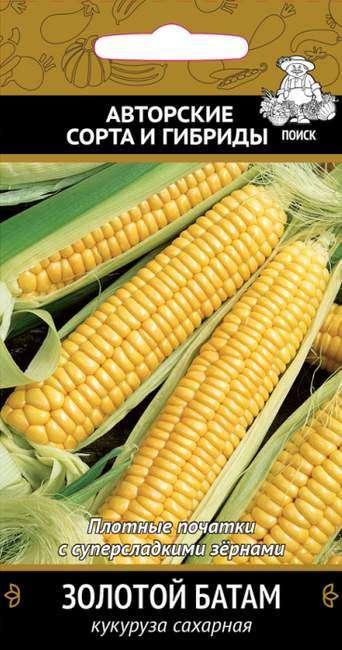 Сорт кукурузы Золотой батам