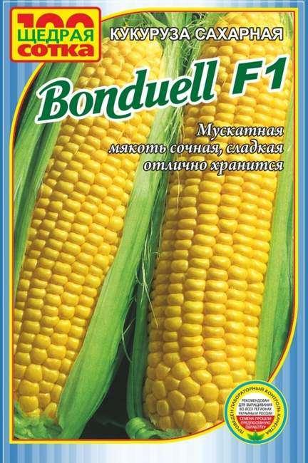 Сорт сладкой кукурузы Бондюэль
