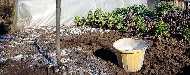 Удобрение почвы под картофель