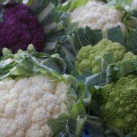 Как вырастить цветную капусту у себя на даче