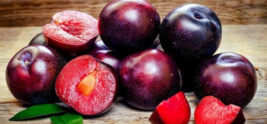 Шарафуга🌳: описание и фото📸 гибрида персика, сливы и абрикоса