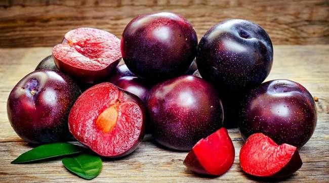 Шарафуга?: описание и фото? гибрида персика, сливы и абрикоса
