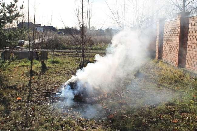 Защита от возвратных заморозков дымом