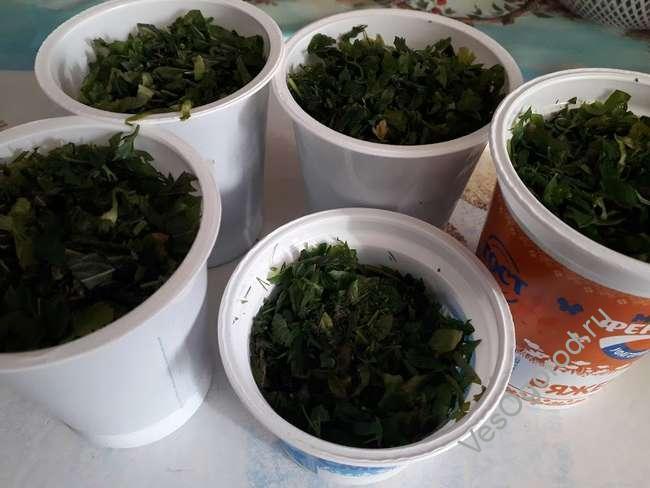 Заморозка зелени на зиму в морозильнике - Готовая зелень