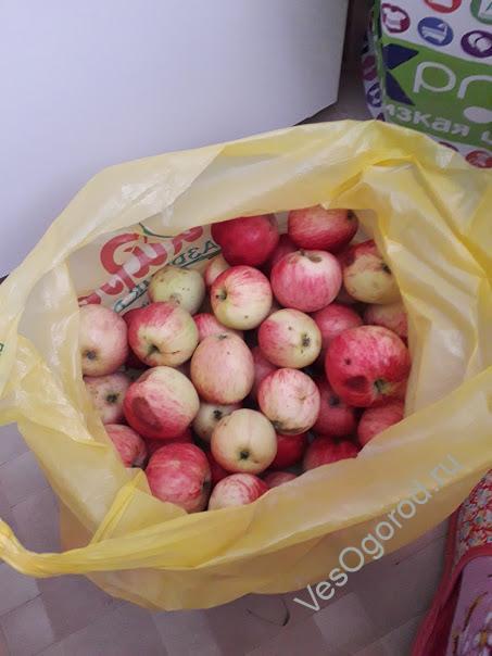 Ингредиенты на варенье из яблок пятиминутка