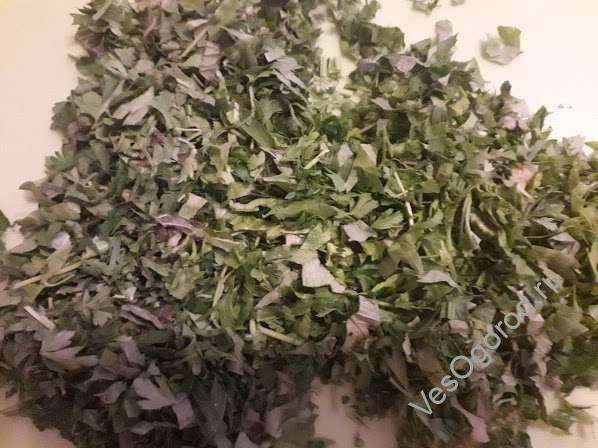 Нарезаем высушенную зелень для заморозки зелени на зиму в морозильнике