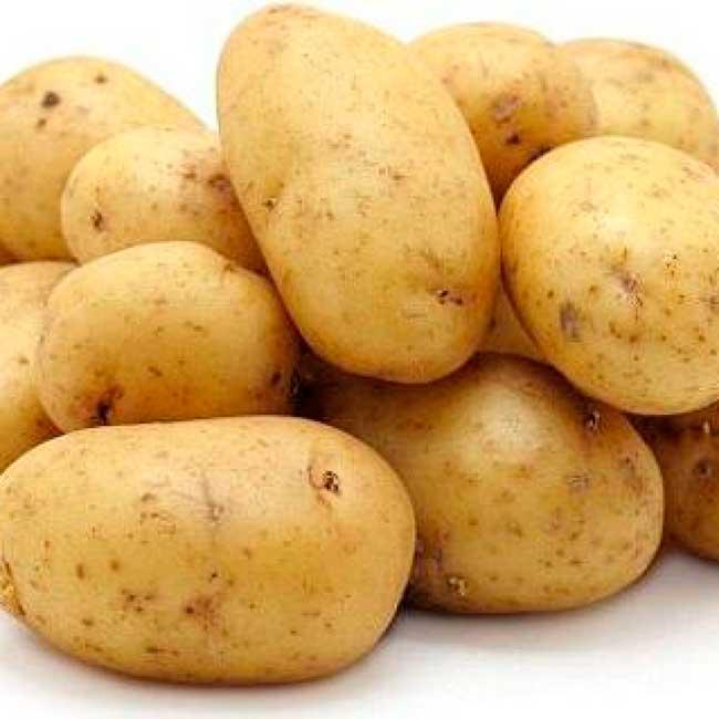 Среднеранний картофель Гала