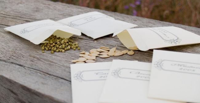 Бумажный пакетик для хранения семян