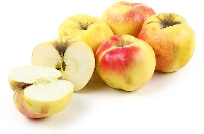 Плоды сорта яблок Богатырь