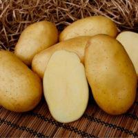 Описание сорта картофеля Брянский деликатес: фото, правила выращивания, отзывы