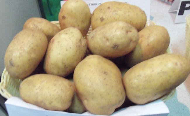 Приемущества картофеля Невский