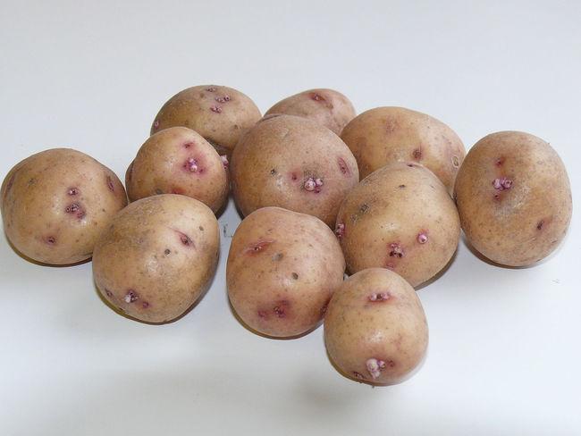 Проращивание сорта картофеля Аврора
