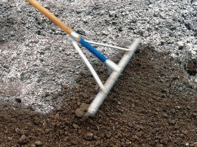 Внесение в почву доломитовой муки