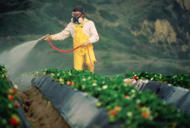 Меры безопасности при работе с удобрением