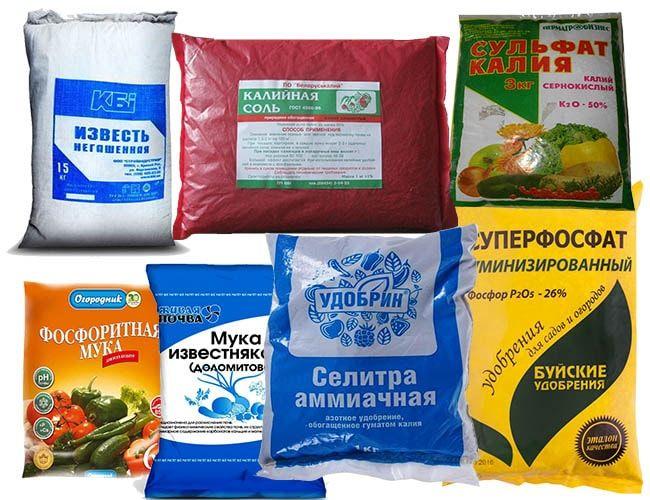 Минеральные удобрения для клубники