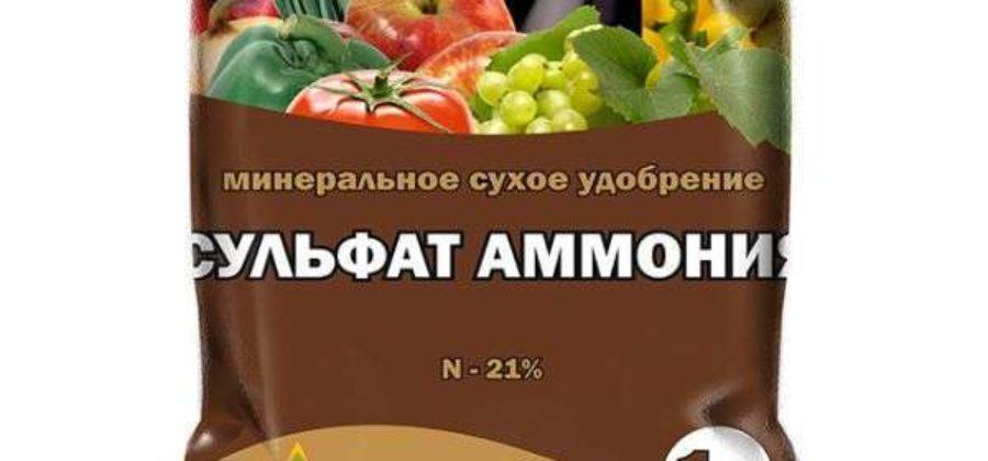 Сульфат аммония как удобрение: применение на огороде