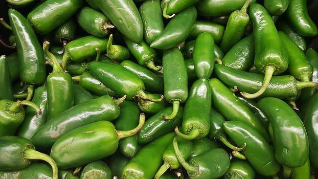 Плоды горького перца Халапеньо