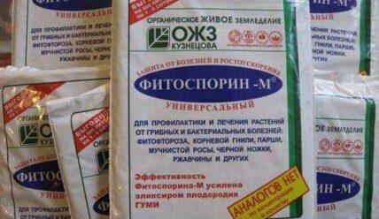 Какие средства применять для лечения и профилактики фитофторы картофеля