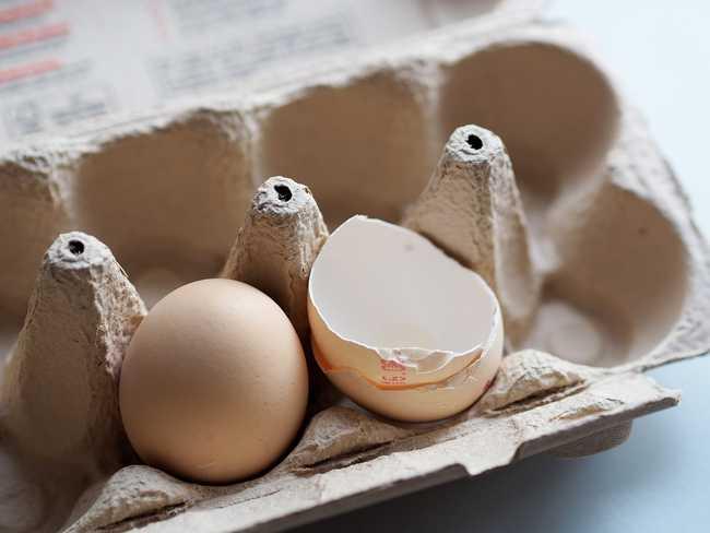 Какую яичную скорлупу использовать для удобрения