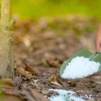 Азотные удобрения: Виды, названия, популярные азотные минеральные удобрения