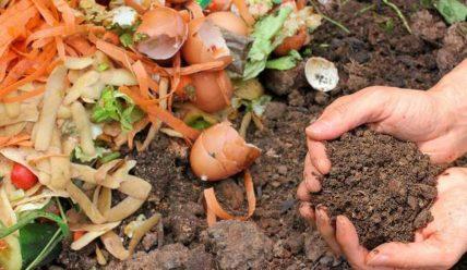 Органические удобрения для огорода | Список лучших