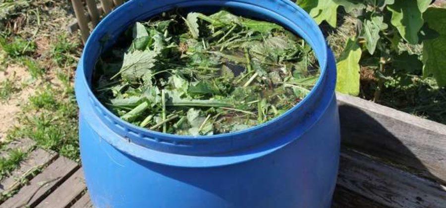 Как приготовить зеленое удобрение из травы | Как применять для растений
